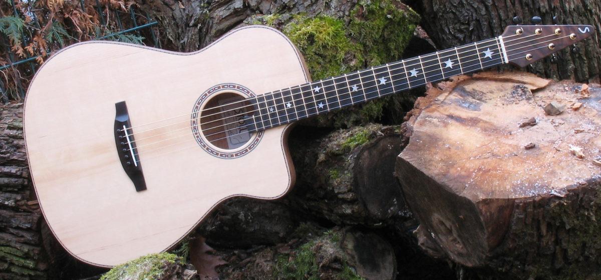 Ambition Fingerstyle CustomSilver Oak mit Zargenschalloch und Cutaway