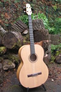 Gitarrenbau Christian Stoll: Akustische Bassgitarre mit Stahlsaiten auf Basis Classicbass