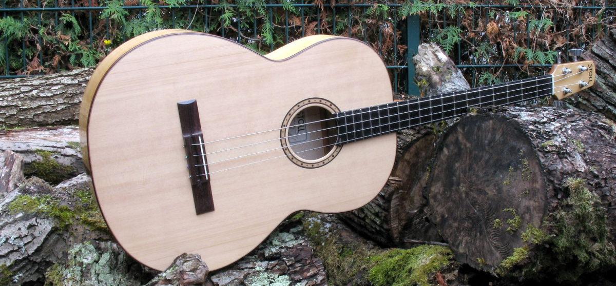 Gitarrenbau Christian Stoll: Akustische Bassgitarre shortscale - quer