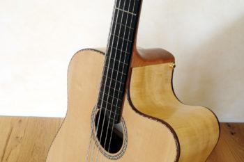 IQ Akustikbass semi-fretless 5-Saiter - cutaway