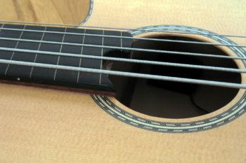 IQ Akustikbass semi-fretless 5-Saiter - rosette