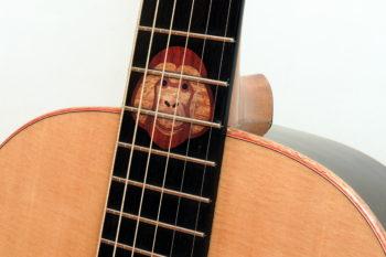 Orang Utan Gitarre