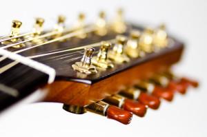 Stoll Ambition 12 - zwölfsaitige Gitarre mit Mini-Mechaniken