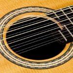 Gitarrenbau Christian Stoll: 12-saitige Stahlsaiten-Gitarre Ambition 12 - Rosette