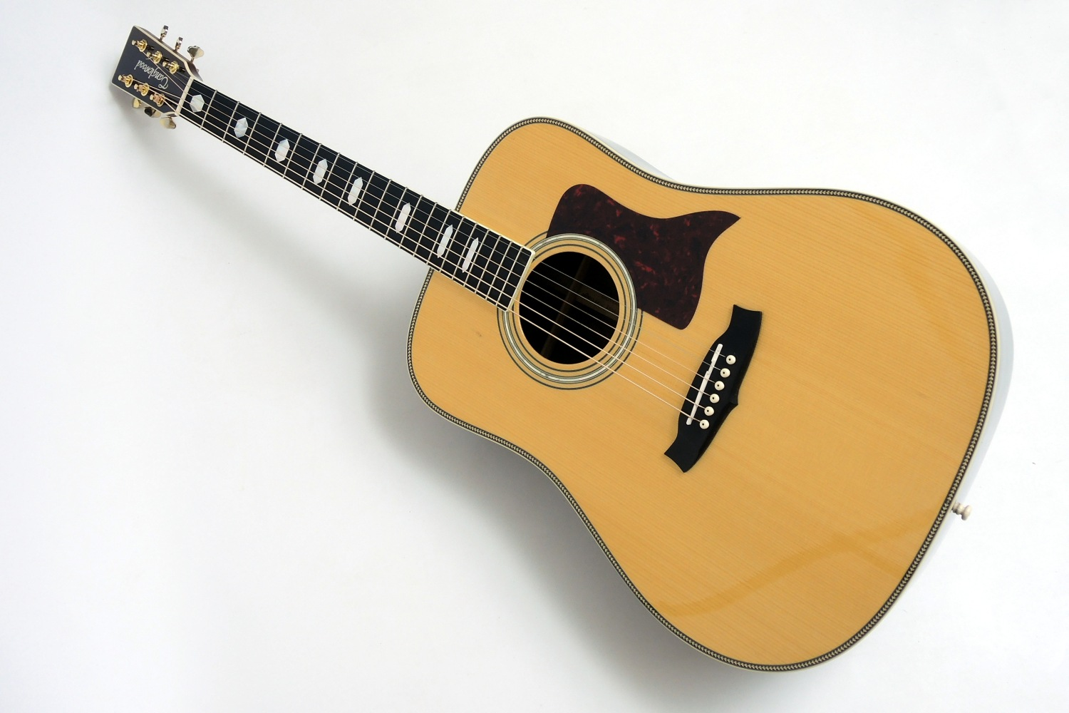 Tanglewood Dreadnought TW 1000