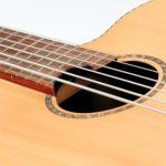legendärer Akustik Bass - 6-Saiter