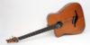 Linkshänder 5-Saiter IQ-Bass mit Decke aus Douglastanne