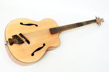 akustik bass archtop