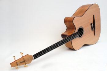 legendärer Akustik Bass - 4-Saiter