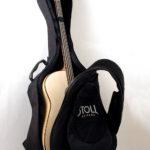 Der legendäre Akustikbass - Gigbag