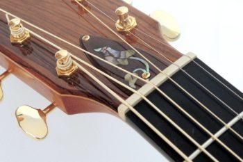 Fender ESD 10 Acoustic Gitarre gebraucht zu verkaufen