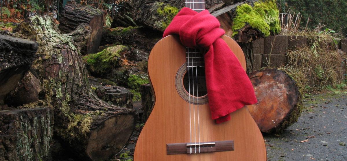 Gitarrenbau Christian Stoll: was tun gegen Trockenschäden - Gitarre winterfest machen