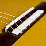 Klassische Meister Solisten gitarre Evolution M