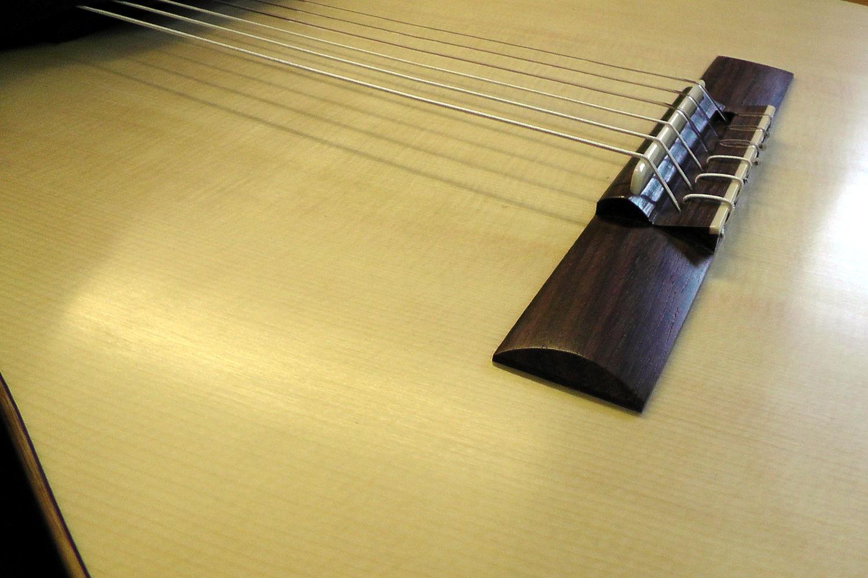 Gitarrenbau Christian Stoll: messeneuheit 2014 Doppelhalsgitarre mit 2 Decken - Steg