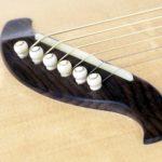 Mini jumbo palisander faecherbuende fanned frets cutaway