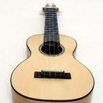 solisten konzert ukulele profi gitarrenbauer robinie