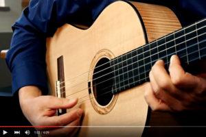 semi-fretless Konzertgitarre