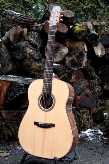 Stahlsaiten-Gitarre mit Hochglanz-Palisander-Korpus und goldenen Mechaniken