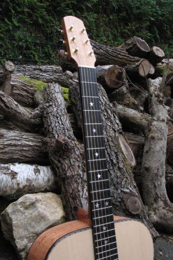 Stahlsaiten-Gitarre mit 3 Tonabnehmern - Ambition Silbereiche - Hals