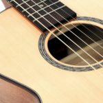 stahlsaiten-reisegitarre western steelstring walnuss Pt69 Travel
