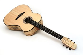 tamarinde palisanderfrei western stahlsaiten gitarre ambition gitarrenbauer Christian stoll