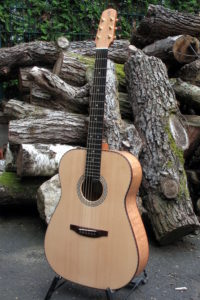 Stahlsaiten Gitarre indische Silbereiche: Ambition