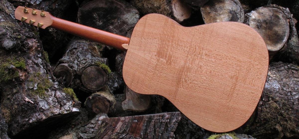 Stahlsaiten Gitarre indische Silbereiche: Ambition - Boden
