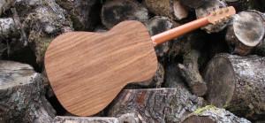 Stahlsaiten Gitarre indische Walnuss: Ambition - Boden