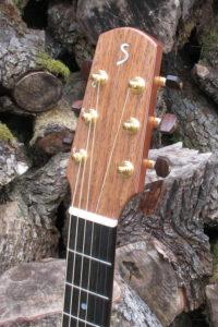 Stahlsaiten Gitarre indische Walnuss: Ambition - Kopf