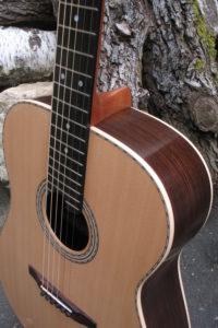 Stahlsaiten Gitarre indischer Palisander: Ambition - Zarge