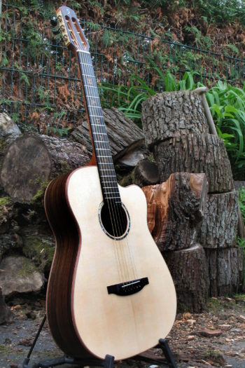 Gitarrenbau Christian Stoll: Stahlsaitengitarre Ambition Fingerstyle Cutaway mit Griffbrett-Inlays - links