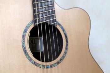 Bariton Jumbo Steelstring mit Zargenschallloch Cutaway Anthem Pickup Bevel Fan Frets - Rosette