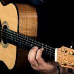Video Steel String Guitar Ambition Silver Oak
