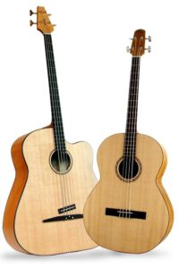 2005 Acoustic Basses: The Nylonstring Classic Bass appears smaller than the legandary Acoustic Bass, but sounds great