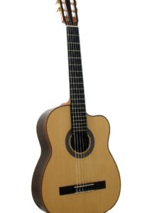 2007: Teacher´s guitar, special purpose: small body, short scale...