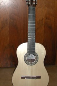 2008 8-string: The body looks tiny with an 8-string neck2008