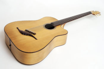 5-string large Acoustic Bass Fanned Frets unplugged