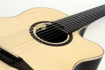 Classic Crossover 7-string multiscale fan frets cutaway pickup