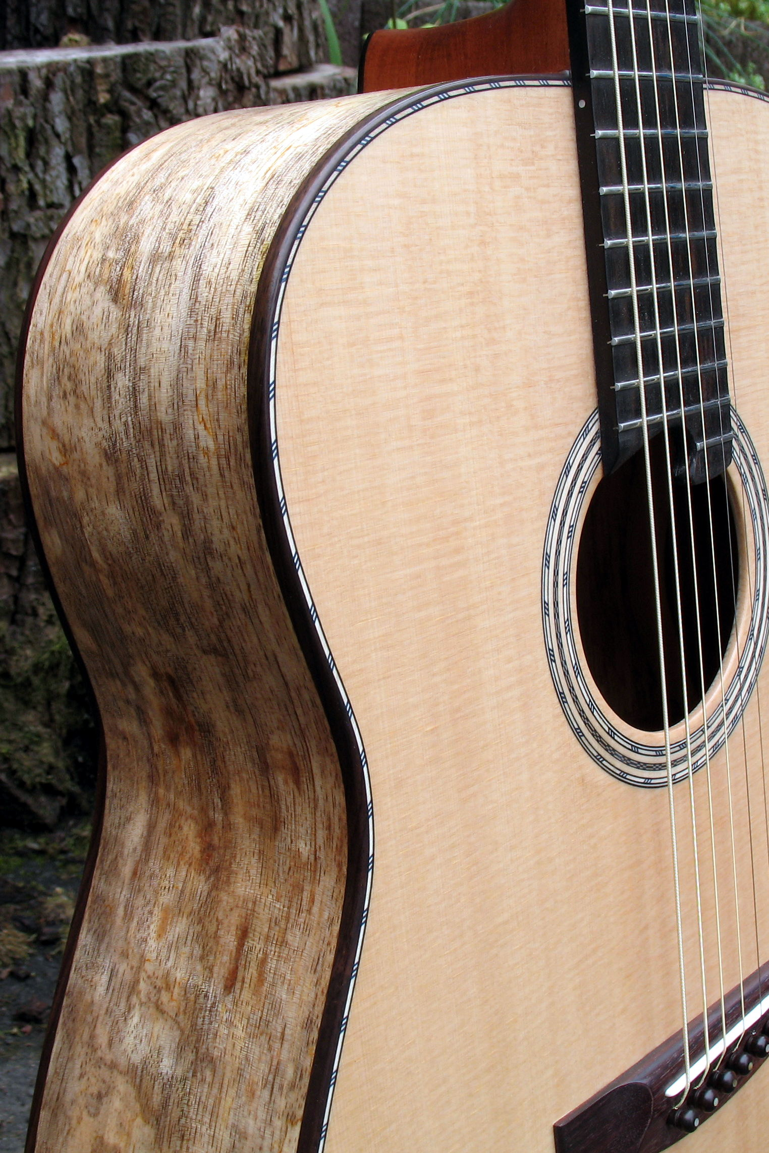 Steelstring Guitar Ambition with Mango body - rosette sides