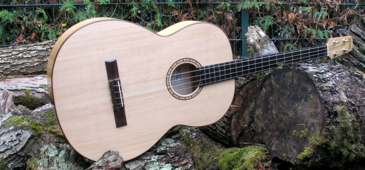 Acoustic Bass Guitar with Steel Strings based on Classic Bass