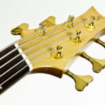 Multiscale Acoustic IQ Bass fanned frets Stoll Luthier