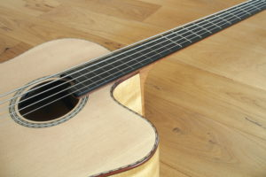 IQ Acoustic Bass 5 string semi fretless - fret board