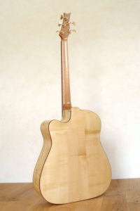 IQ Acoustic Bass 5 string semi fretless - back