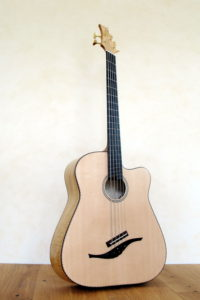 IQ Acoustic Bass 5 string semi fretless