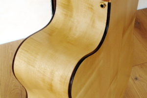IQ Acoustic Bass 5 string semi fretless - cutaway