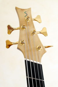 IQ Acoustic Bass 5 string semi fretless - head