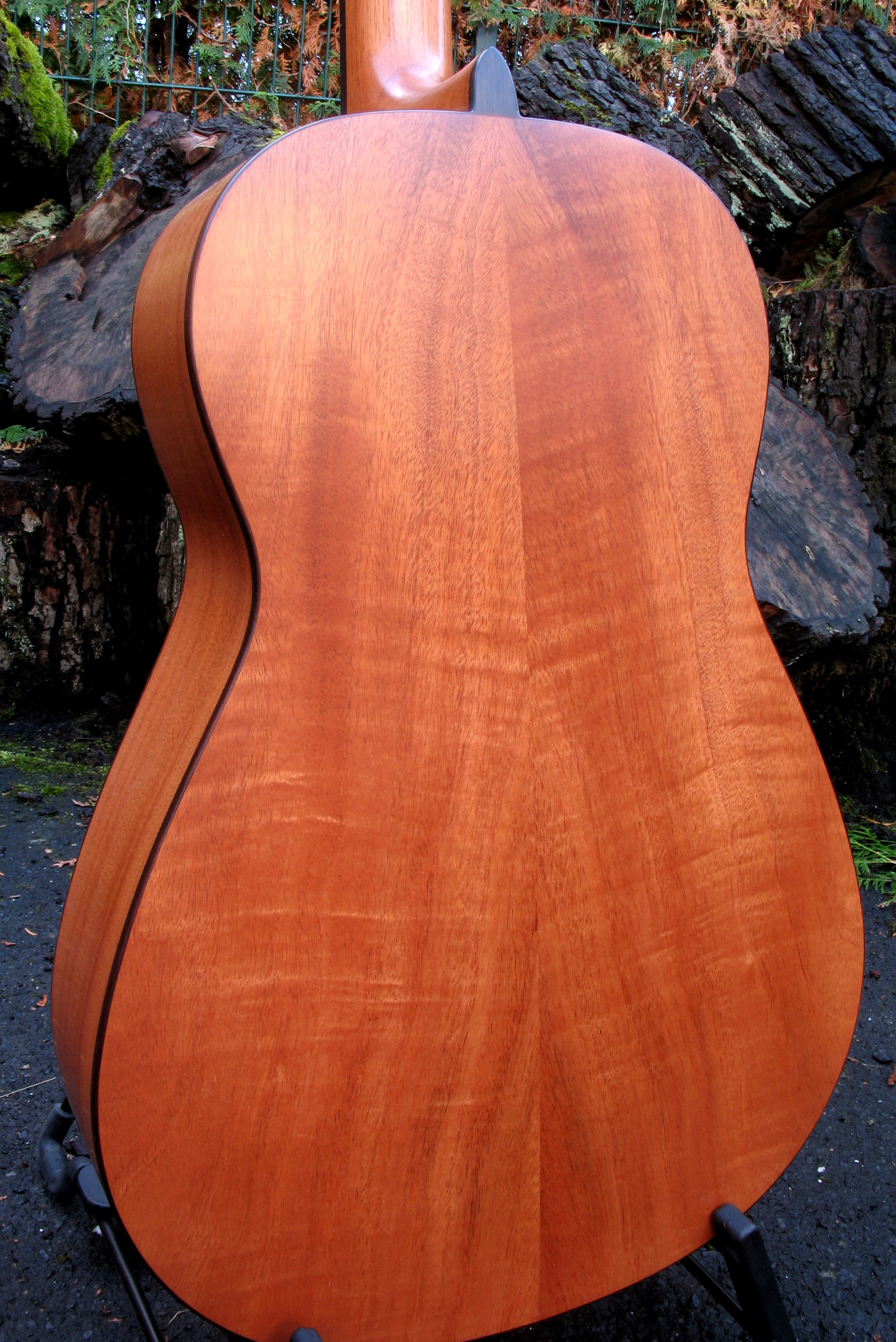 Steelstring Guitar Ambition Parlor Mahohany Spruce
