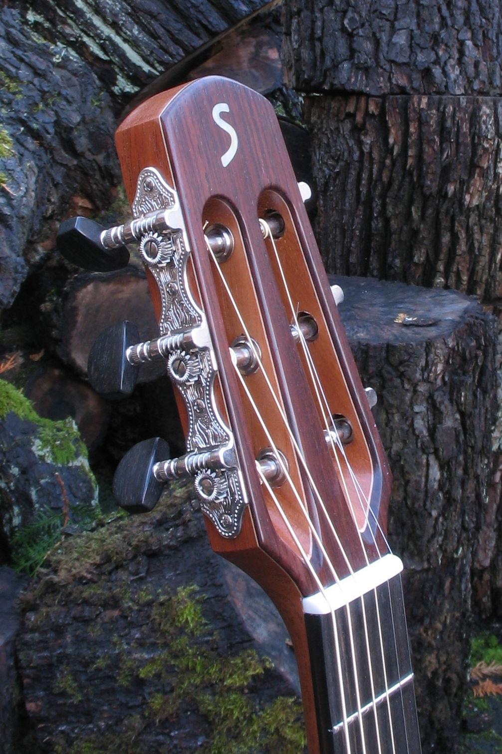 Steelstring Guitar Ambition Parlor Mahohany Spruce - head