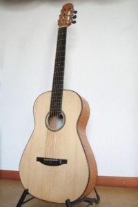 Steelstring Guitar Ambition Parlour Silver Oak