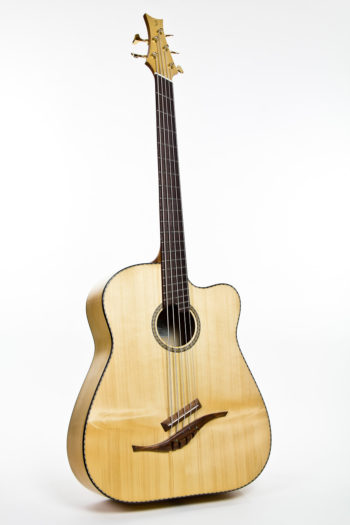 Stoll IQ Bass Multiscale Acoustic Bass fanned frets
